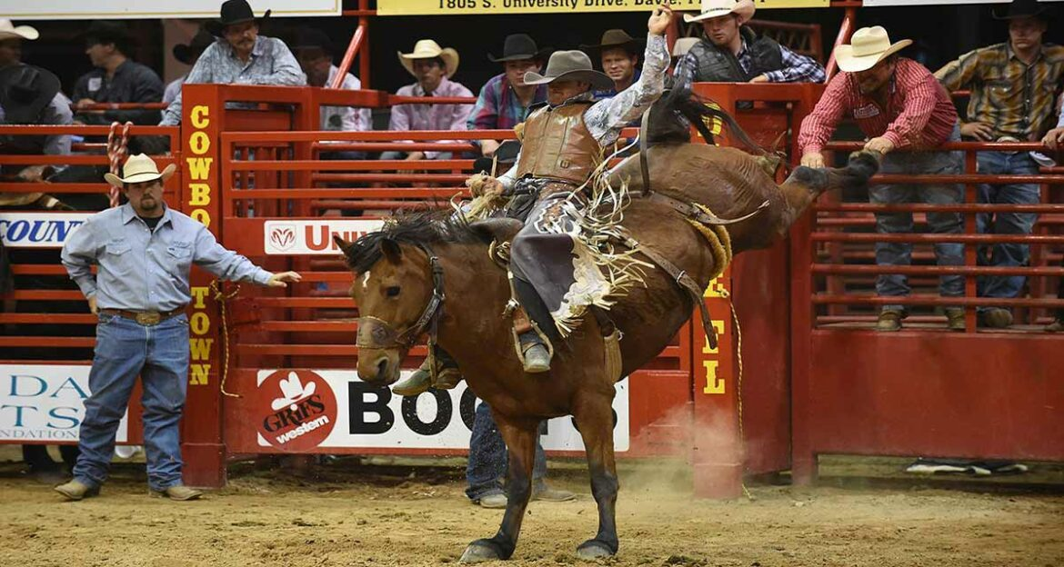 Top 10 Winners in the Category Best Rodeo